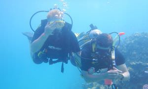PADI Open Water Diver, der Einsteiger Tauchkurs in Safaga
